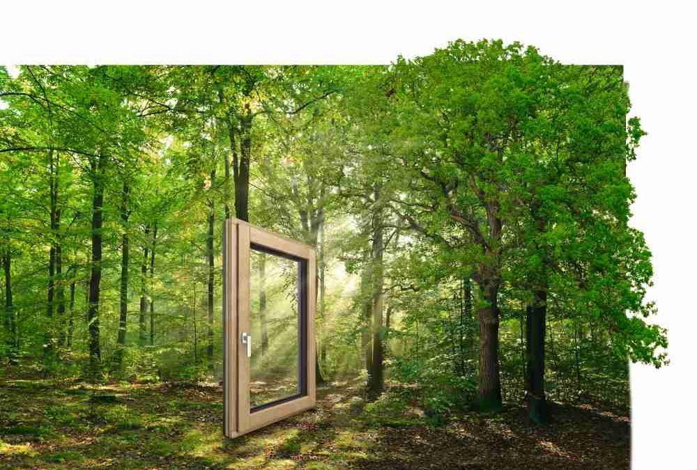 Het nieuwe hout/aluminium raam HF410 van Internorm
